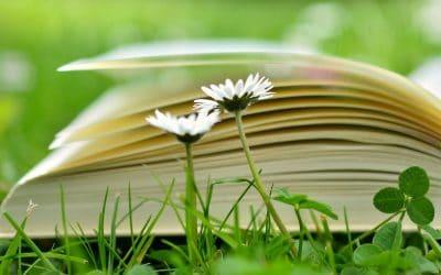 29 août 2020 : Atelier Améliorer la lecture chez les enfants